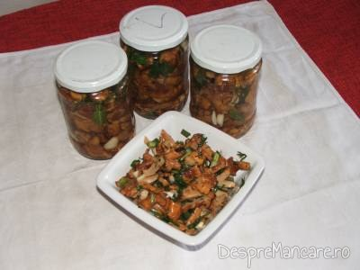 salata de bureti galbiori 3
