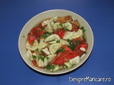 salata de ardei copti, castraveti si usturoi