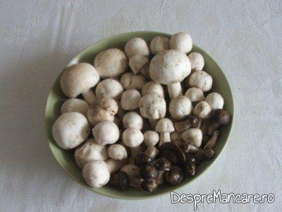 bureti si ciuperci albe conservate in otet