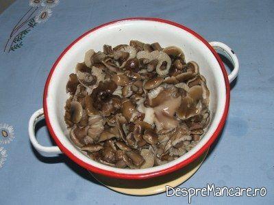 zacusca cu ciuperci 1