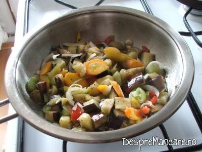 Ghiveci asortat din legume, cu piept de pui