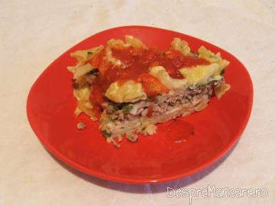 Macaroane cu carne tocata, specialitatea mamei mele