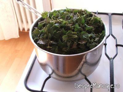 Urzici crude adaugate peste legumele calite pentru ciorba de urzici, cu leurda.