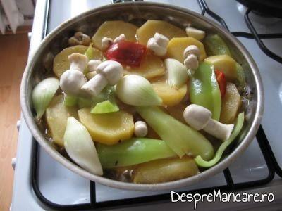 Legume si ciuperci puse in sosul de la gusa de curcan umpluta cu 3 feluri de carne.