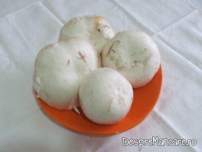 Ciuperci albe, proaspete, pentru ciulama din piept de pui si ciuperci.