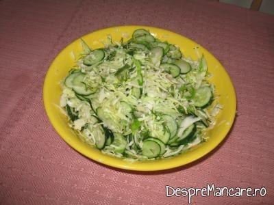 Salata de varza noua cu castraveti si marar pentru cartofi noi inabusiti.