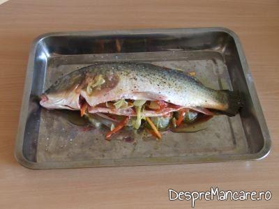 Crap umplut cu legume asezat pe pat de legume calite si felii de citrice pentru crap cu legume, lamai si portocale la cuptor.
