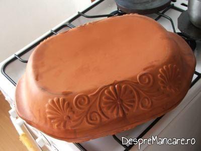 Vasul roman din ceramica, inainte de introducerea in cuptor, pentru gaina coapta ca in test.