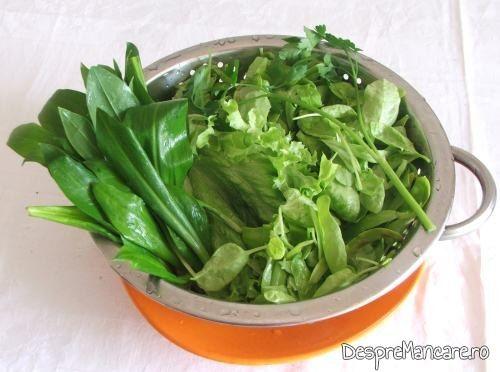 Verdeata spalata si lasata la scurs, pentru ciorba de loboda, leurda si salata, cu ou si smantana.
