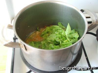 Calire loboda impreuna cu legumele pentru ciorba de loboda, leurda si salata, cu ou si smantana.