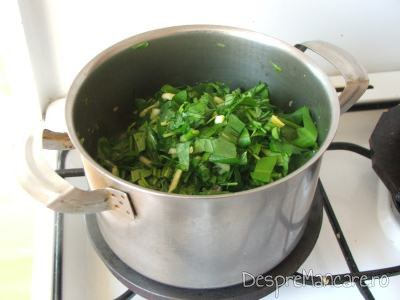 Calire salata verde impreuna cu loboda si radacinoase pentru ciorba de loboda, leurda si salata, cu ou si smantana.