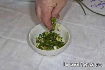 Adaugare verdata in maestecul de usturoi frecat cu ulei de masline pentru mujdei din usturoi uscat, usturoi verde si iaurt.