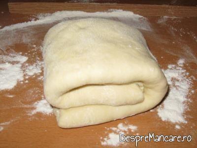 Aluatul gata pregatit pentru tarte.