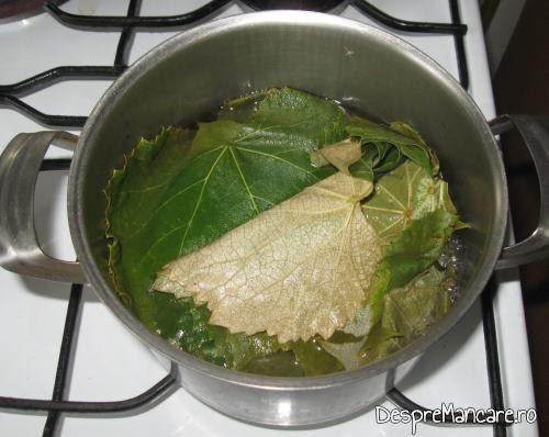 Oparirea frunzelor de vita, in apa fiarta cu sare grunjoasa, pentru sarmalute in foi de vita.