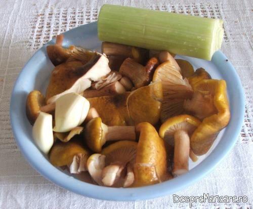 Ingrediente pentru cus-cus cu praz, ciuperci si conopida.