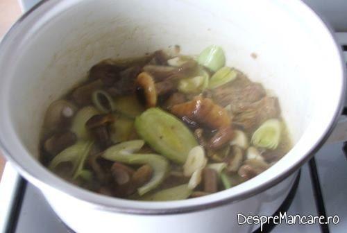 Calire praz impreuna cu ghebe pentru cus-cus cu praz, ciuperci si conopida.