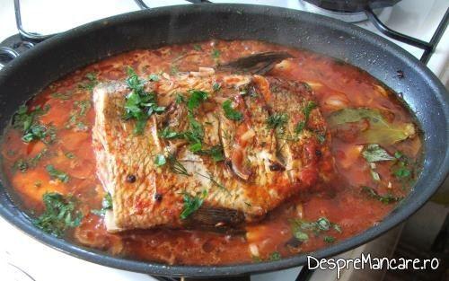 Verdeata presarata peste platica la tigaie in sos de rosii, cu mamaliga calda, gata preparata.