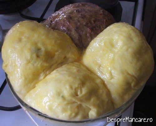 Cozonacul de Paste uns cu ou batut gata de introdus la copt in cuptorul incins al aragazului.