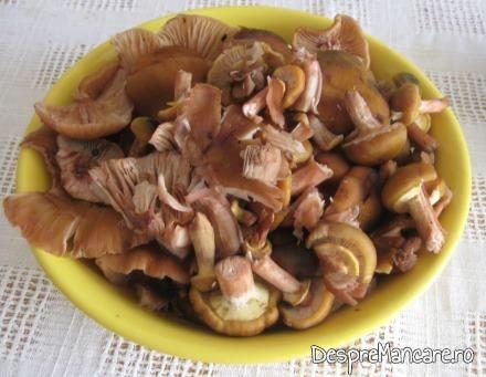 Ghebe pentru legume umplute cu carne si ghebe.