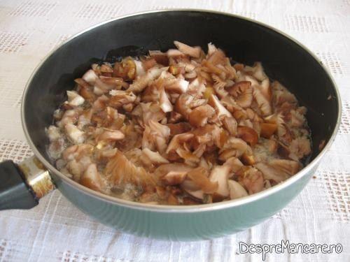 Calire ghebe in ulei de masline pentru legume umplute cu carne si ghebe.