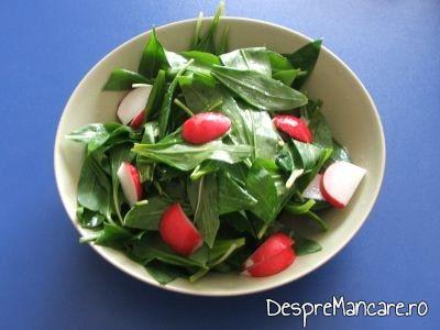 Salata de leurda cu ridichi de luna, sare grunjoasa, ulei de masline si zeama de lamaie servita la omleta cu rosii.