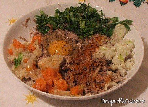 Ingrediente de trebuinta pentru terina din costita si carne afumata de porc, legume si carne de vitel, fierte.