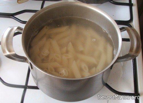 Paste fainoase puse la fiert pentru garnitura la terina din costita si carne afumata de porc, legume si carne de vitel, fierte.
