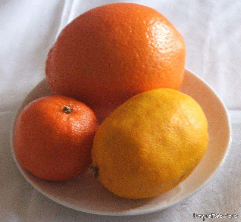 Citrice pentru gasca cu portocale.