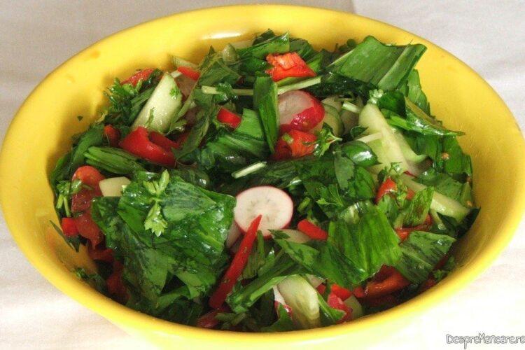 Salata de sezon servita la iepure cu legume in sos de vin.