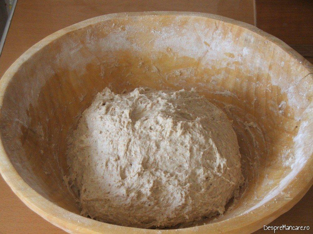 Coca pentru paine de casa coapta in cuptor