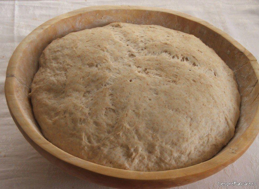 Coca dospita pentru paine de casa coapta in cuptor.