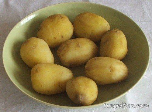 Cartofi noi, fierti, pentru cartofi gratinati.