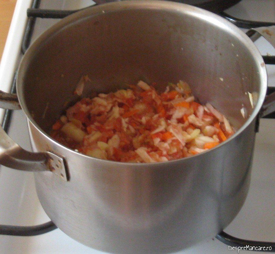 Calire radacinoase, scobitura de la dovlecei, ceapa, usturoi, rosii si ardei pentru ciorba de dovlecei umpluti cu carne tocata.