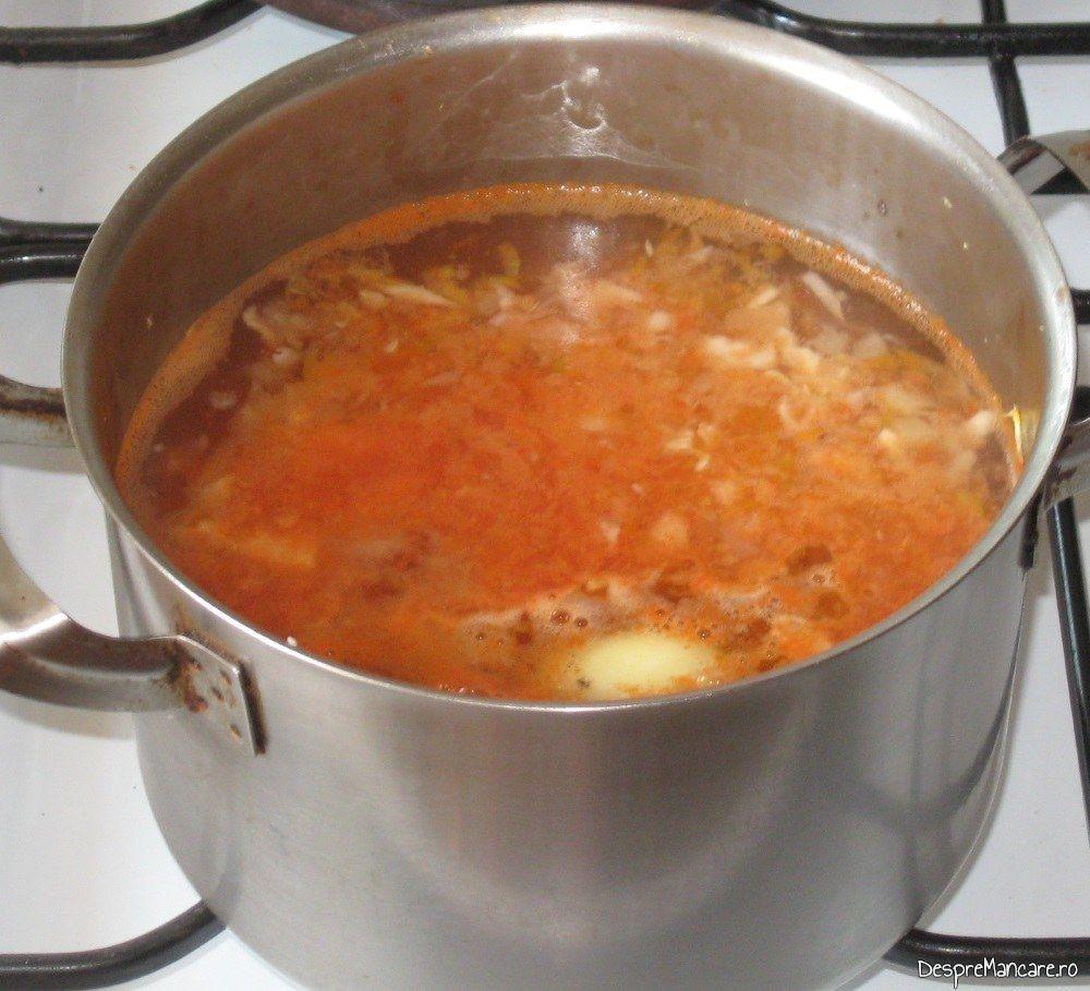 Fierbere ingrediente calite pentru ciorba de dovlecei umpluti cu carne tocata.