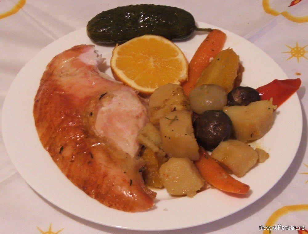 Felie rece de curcan copt la tava, servit cu legume calde.