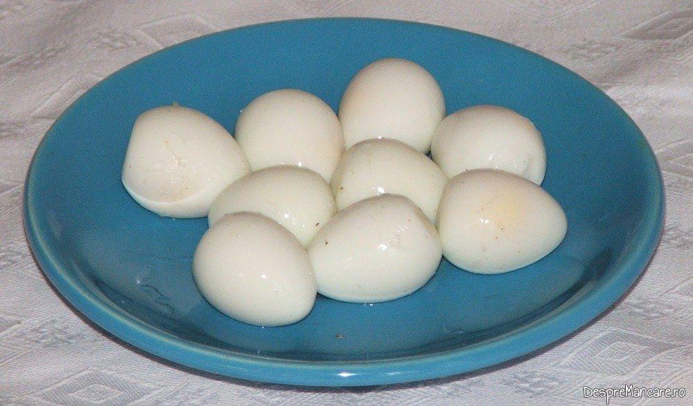 prepelite brasov | oua de prepelita | sanatate pentru sotul tau