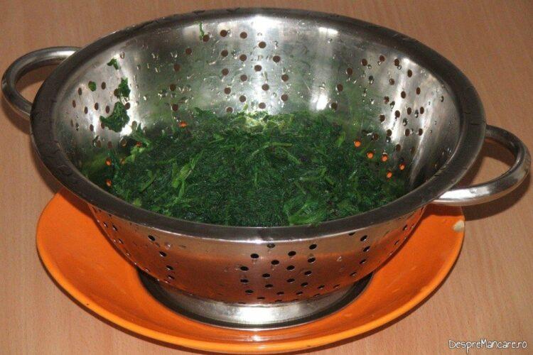 Surgerea intr-o sita a urzicilor oparite pentru spaghete cu sos de urzici si peste prajit.