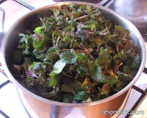 Urzici spalate puse la oparit in apa fiarta cu sare grunjoasa.