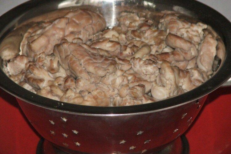 Creier de porc, fiert in apa cu sare grunjoasa, curatat de pielite, clatit cu apa rece si pus la scurs intr-o sita.