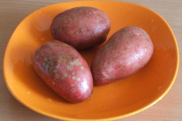 Cartofi rosii pregatiti pentru coacere.