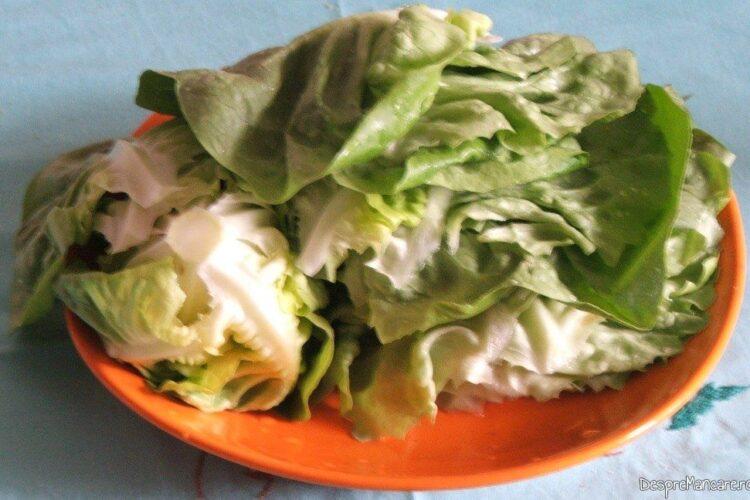 Foi de salata verde pentru ciorba de salata cu perisoare si omleta.