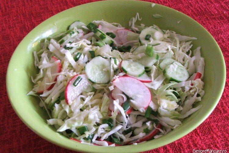 Salata de varza noua, cu castraveti si ridichi.