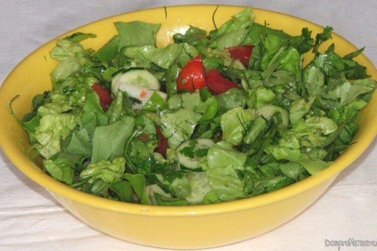 Salata de sezon servita cu chebab perpelit la gratar.