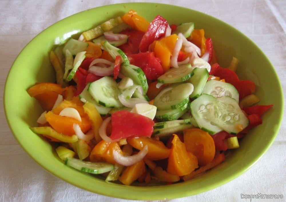 Salata de rosii galbene si rosii, castraveti, ceapa servita la pui intreg cu legume, ciuperci si turmeric, la cuptor.
