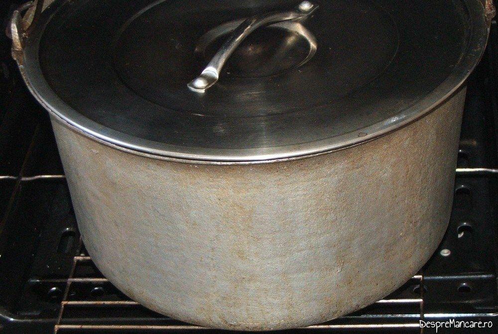 Tuci cu pulpa de capra pus in cuptorul aragazului pentru fierbere/ coacere la foc potrivit.