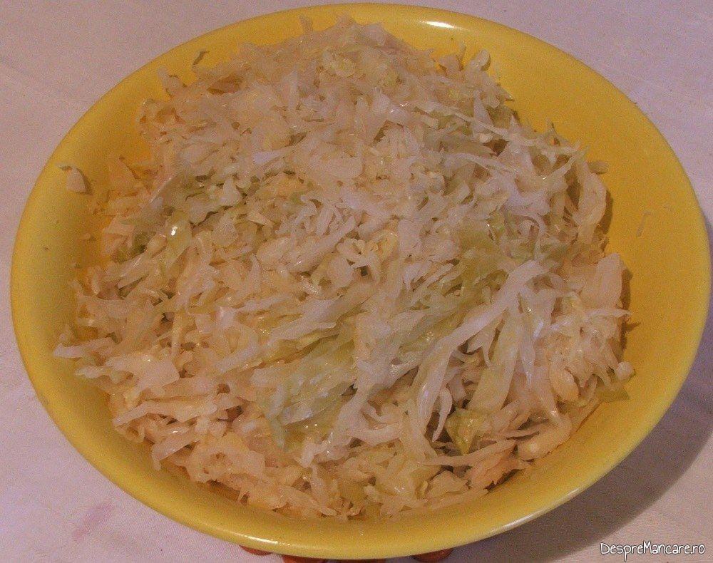 Salata de varza nurata servita la ciorba de fasole boabe cu porcarele.