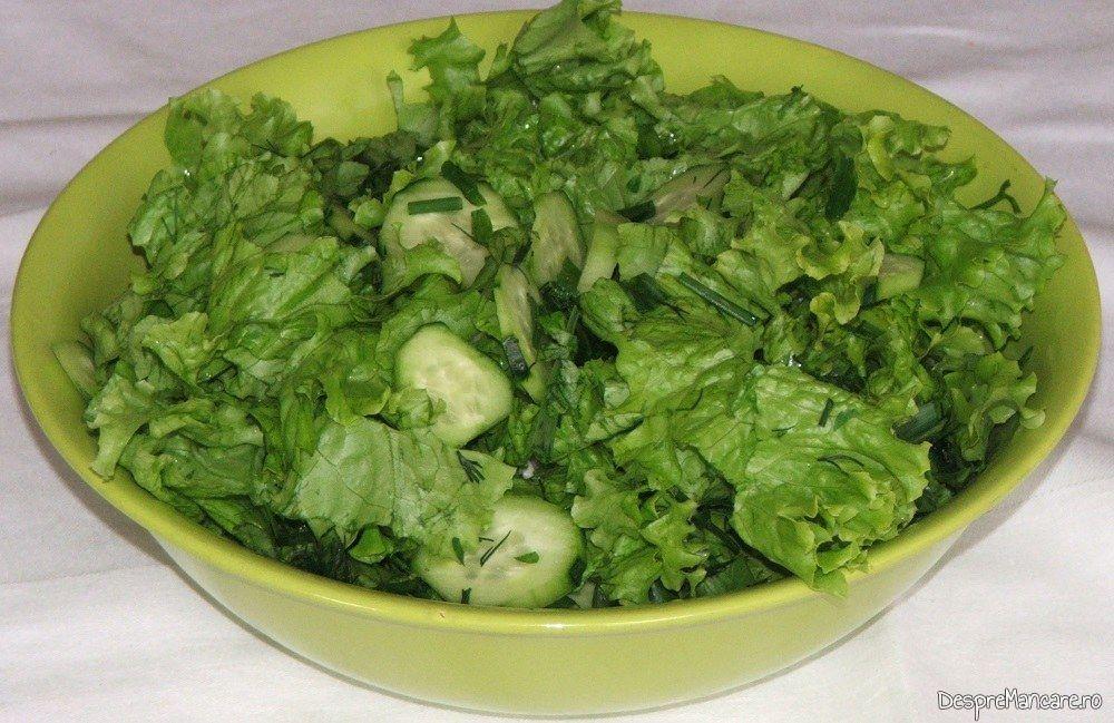 Salata de sezon servita la tartite de curcan cu mancare de bame.