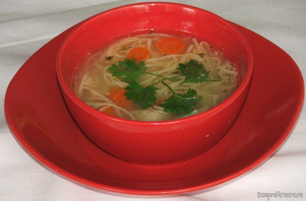 Supa din tartite de curcan cu fidea - preparatul este gata servit.